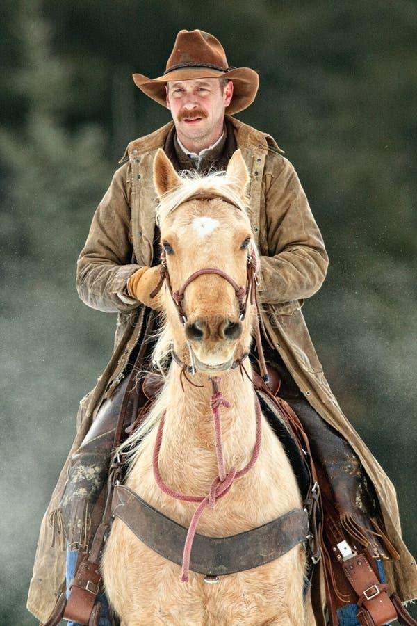Stående av en verklig cowboy royaltyfri foto