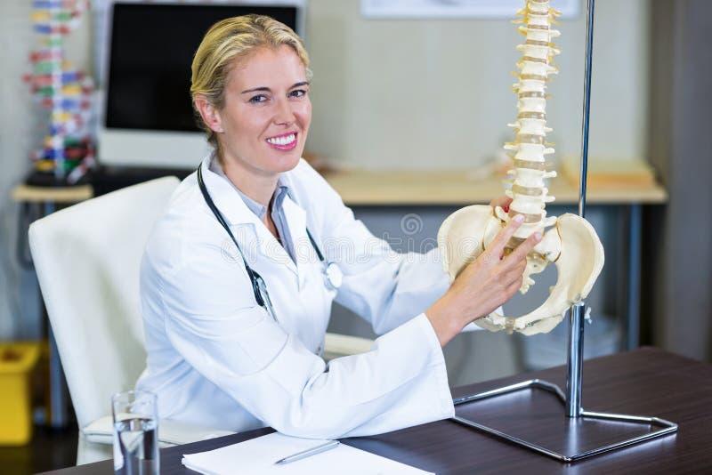 Stående av fysioterapeuten som rymmer en inbindningsmodell arkivfoto