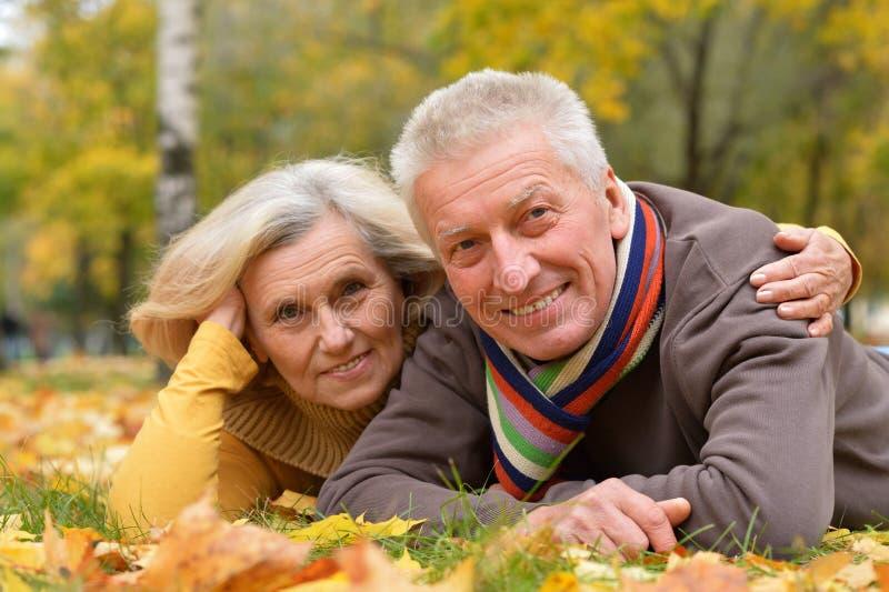 Stående av gulligt äldre ligga för par royaltyfria foton