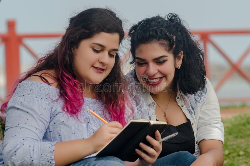 Stående av härliga knubbiga kvinnor som skriver anmärkningar i en anteckningsbok fotografering för bildbyråer