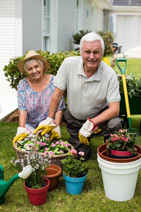 Stående av höga par som tillsammans arbeta i trädgården arkivbild