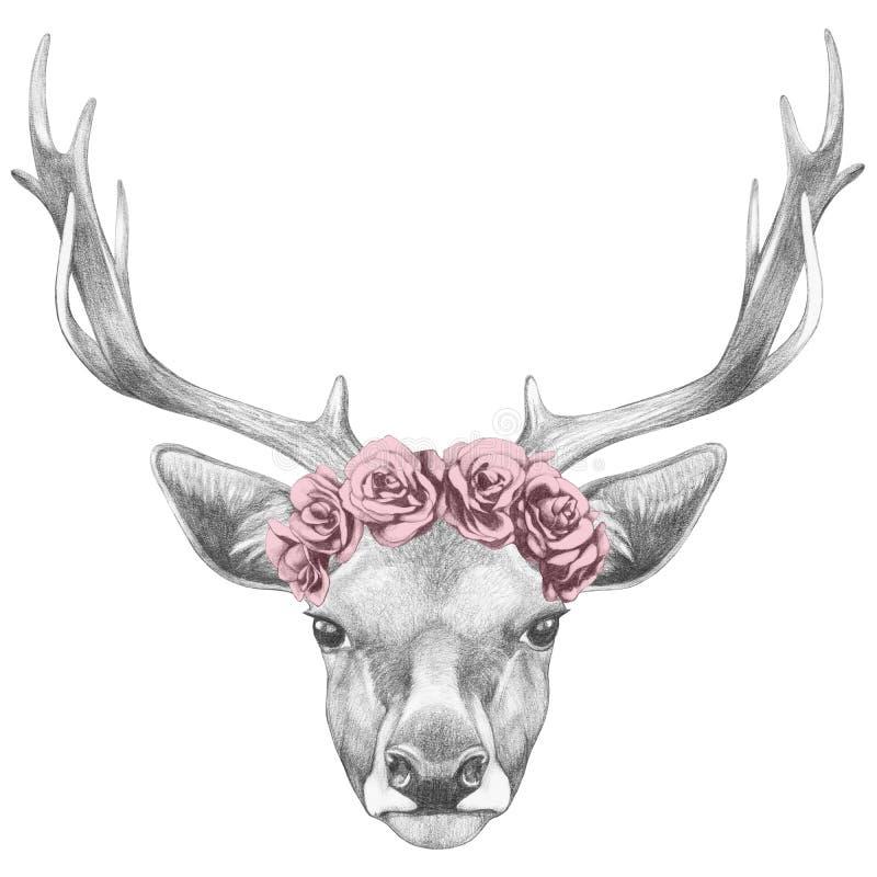 Stående av hjortar med den blom- head kransen stock illustrationer