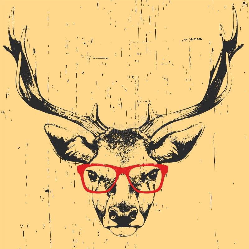 Stående av hjortar med exponeringsglas stock illustrationer
