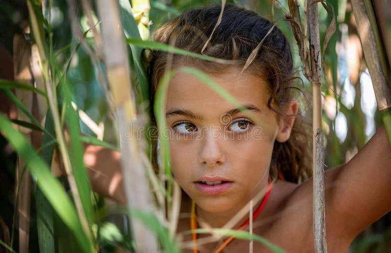 Stående av lite flickan i buskarna fotografering för bildbyråer