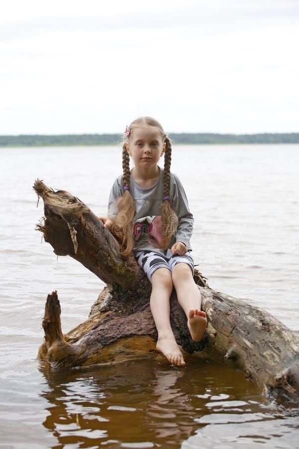 Stående av lite flickan på trädet royaltyfri foto