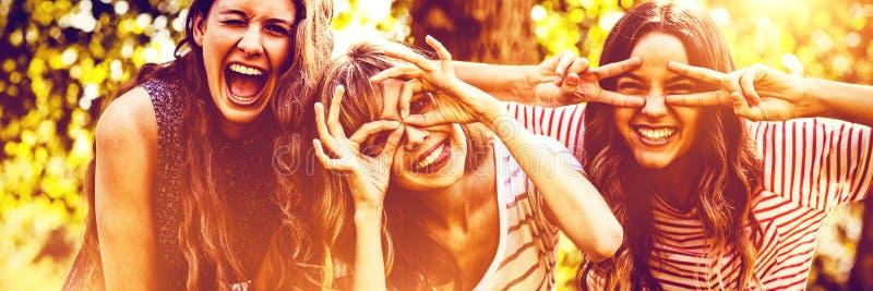 Stående av lyckliga vänner som tar selfie royaltyfri foto