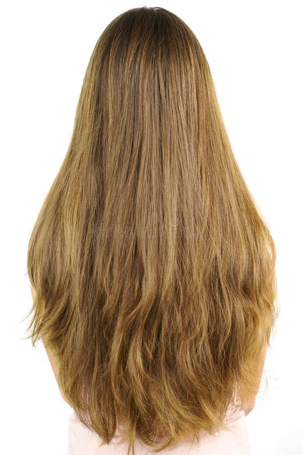 Stående av mycket långt blont hår med lager royaltyfri fotografi