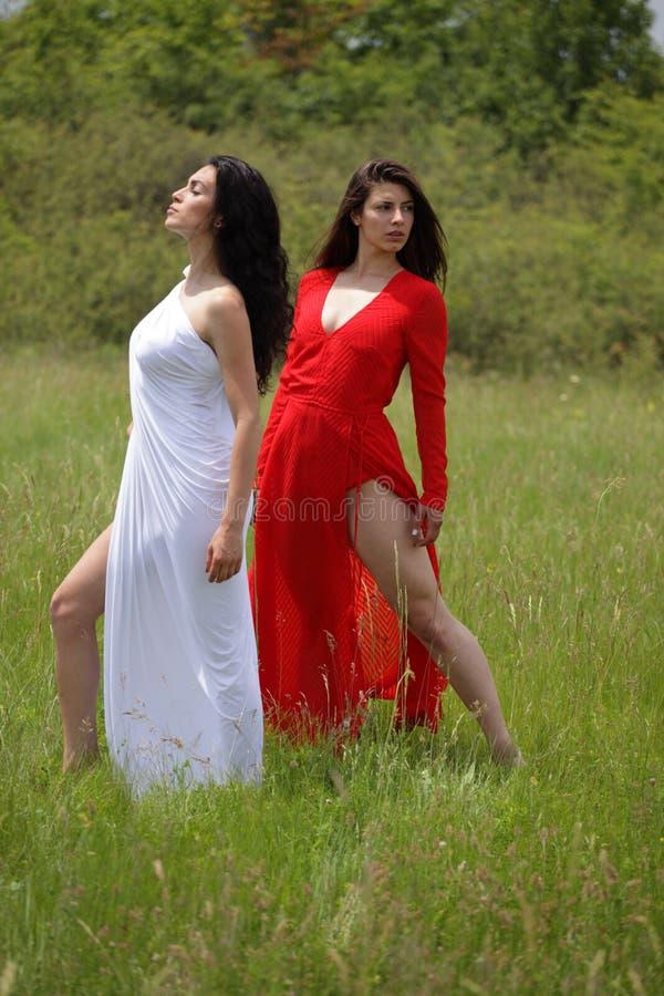 Stående av sexig kvinna två i natur arkivfoto