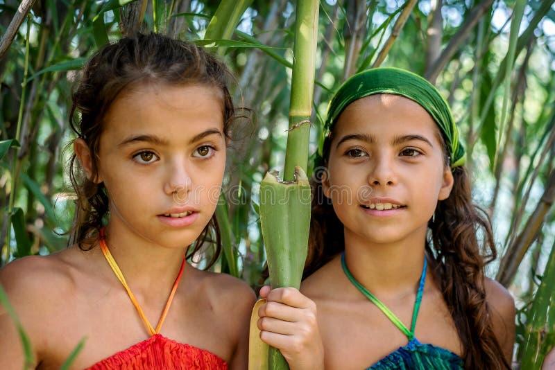 Stående av små flickor i buskarna arkivfoton