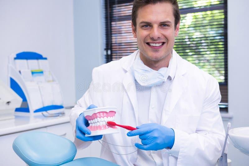 Stående av tandläkaren som borstar den tand- formen arkivfoto