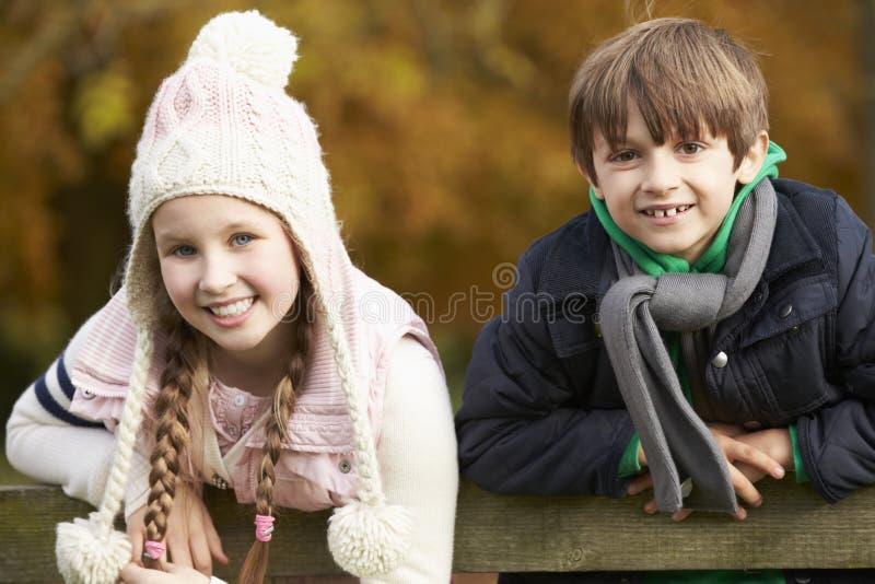 Stående av två barn som lutar över trästaketet arkivfoto