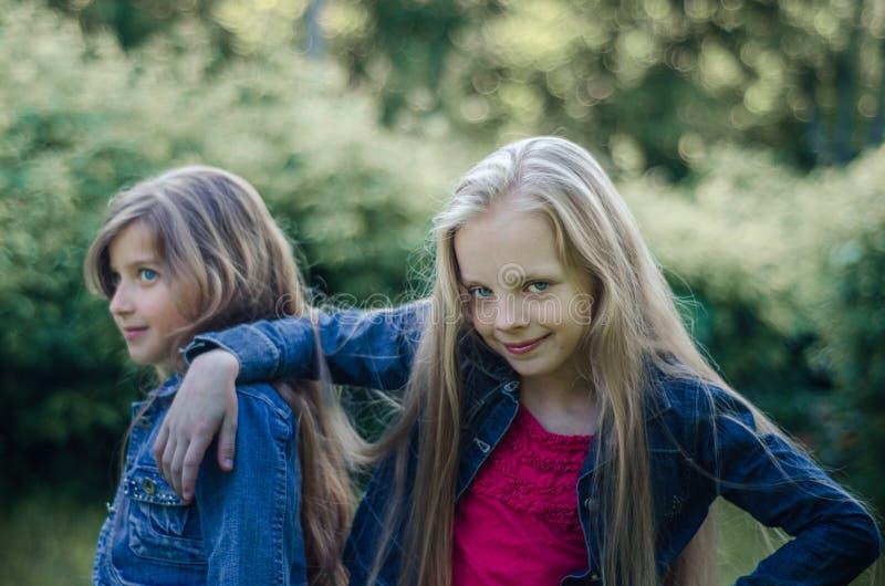 Stående av två gulliga små flickor som utomhus tycker om sommar royaltyfri fotografi