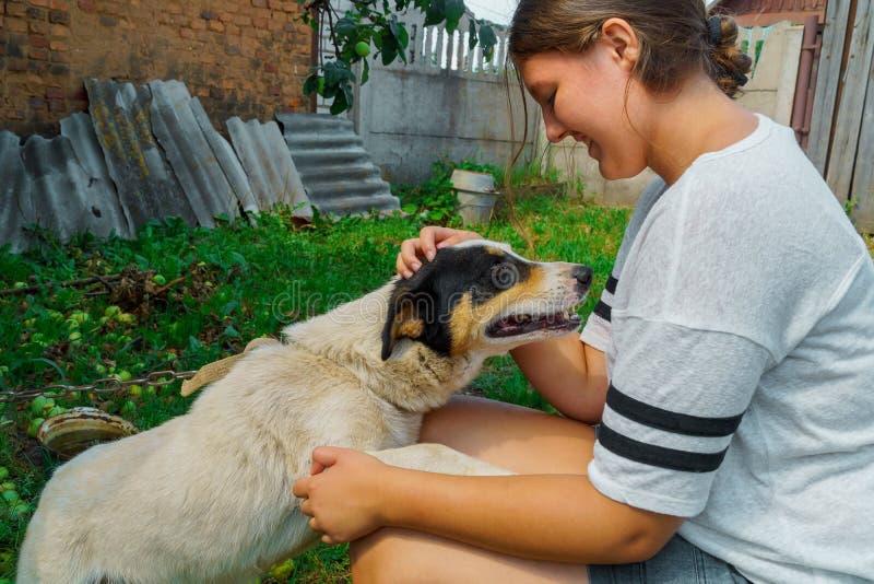 Stående av unga flickan med hunden arkivfoto