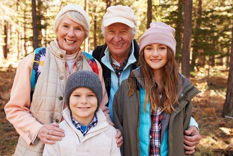 Stående av ungar och morföräldrar i skogen, Kalifornien, USA arkivfoton