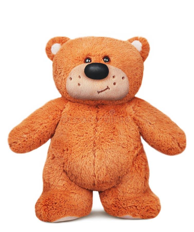 Stående brun leksak för plysch för nallebjörn royaltyfri fotografi