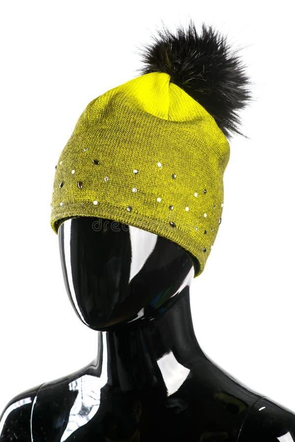 Stående för mode för vinterkläderkvinna royaltyfri bild