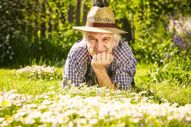 Stående för trädgårdsmästaresugrörhatt royaltyfri foto