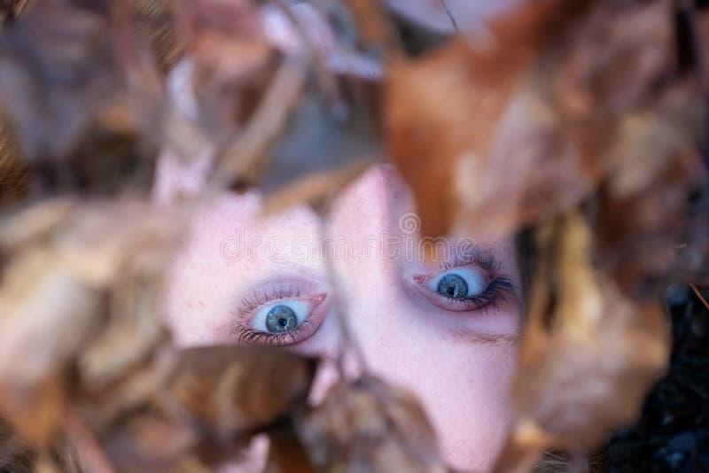 Stående härlig sexig älskvärd ung rödhårig flicka som ligger under en filial med guld- höstsidor, med vänligt leende i blått royaltyfria bilder
