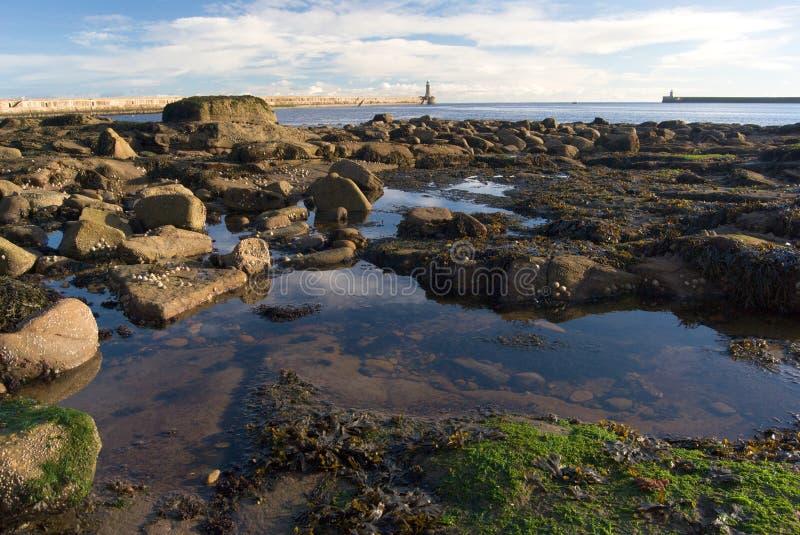 Stående klart vatten mellan stenar som bakom göras av utflöde, reflexionen för blått vatten av himlen och den Tynemouth pir, UK royaltyfria bilder