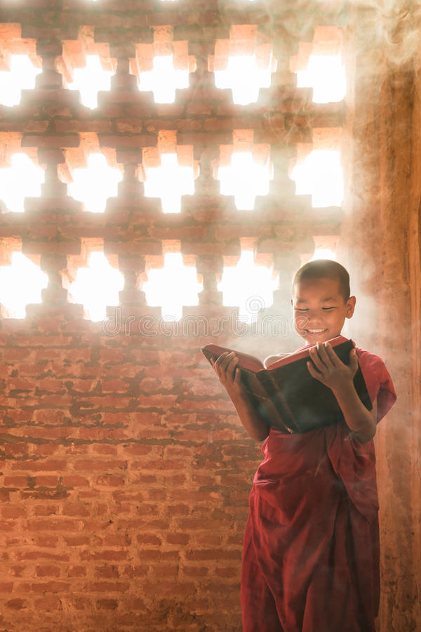 Stående läs- scripture för munk royaltyfria foton