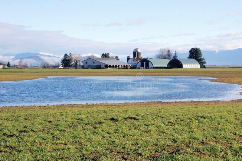Stående vatten på jordbruks- land arkivbilder