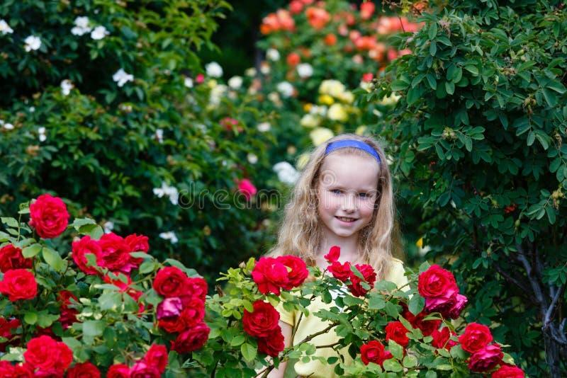 Ståendeflicka och rose buskar royaltyfri fotografi