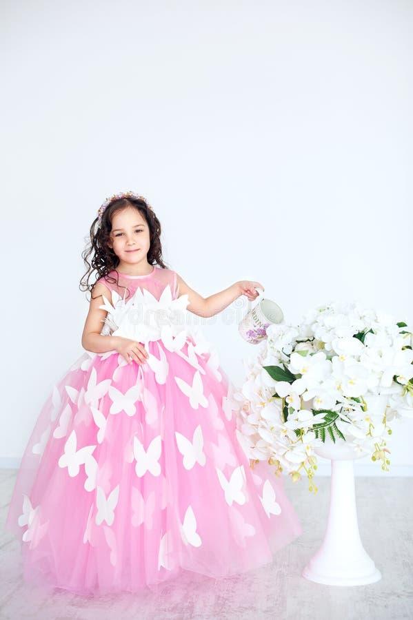 Ståenden av att le lilla flickan i prinsessarosa färger klär med fjärilar royaltyfria bilder