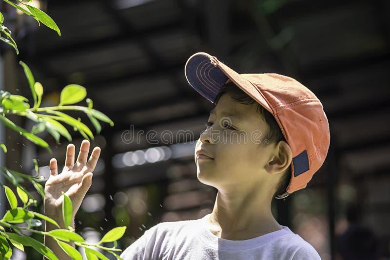 Ståenden av den asiatiska pojken som bär ett rött lock och en vit skjorta, är leendet arkivbilder