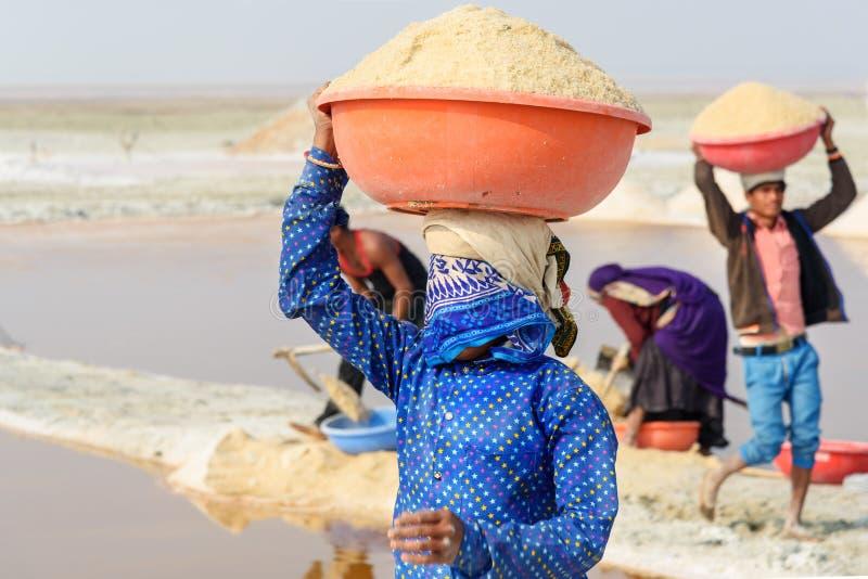 Ståenden av den bärande handfatet för den indiska kvinnan med saltar på hennes huvud på Sambhar Salt Lake Rajasthan india royaltyfria bilder