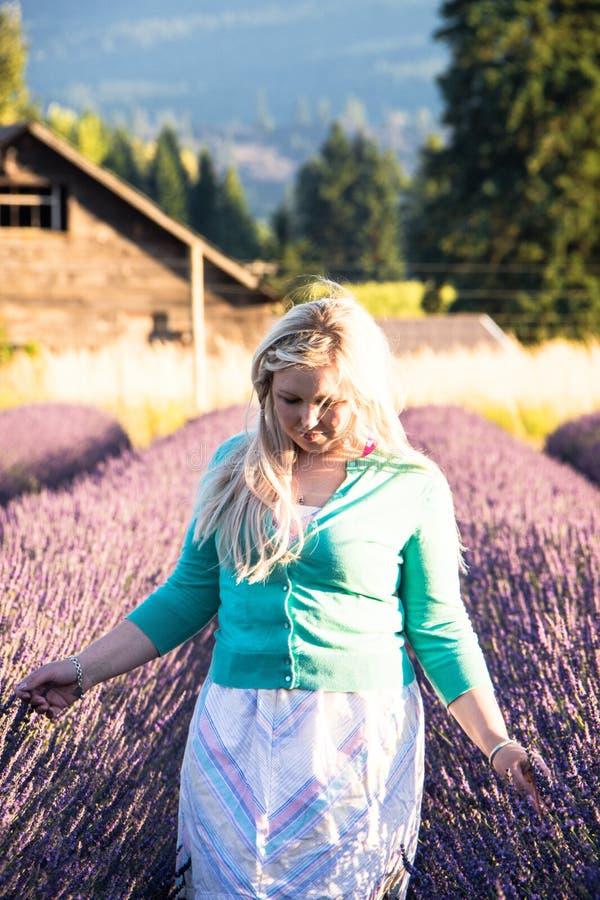 Ståenden av den blonda vuxna kvinnan står i ett lavendelfält som ler, i den guld- timmen för solnedgång royaltyfri foto