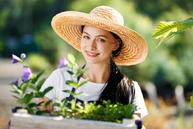 Ståenden av den gladlynta trädgårdsmästaren för den unga kvinnan med blommor i träasken som är till salu i hennes, shoppar arkivfoto