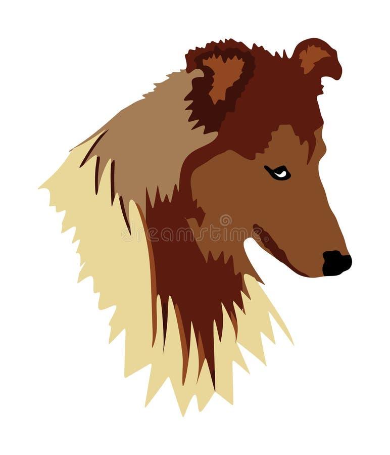 Ståenden av den grova collien hade den isolerade vektorillustrationen Hade av skotsk herdehund stock illustrationer