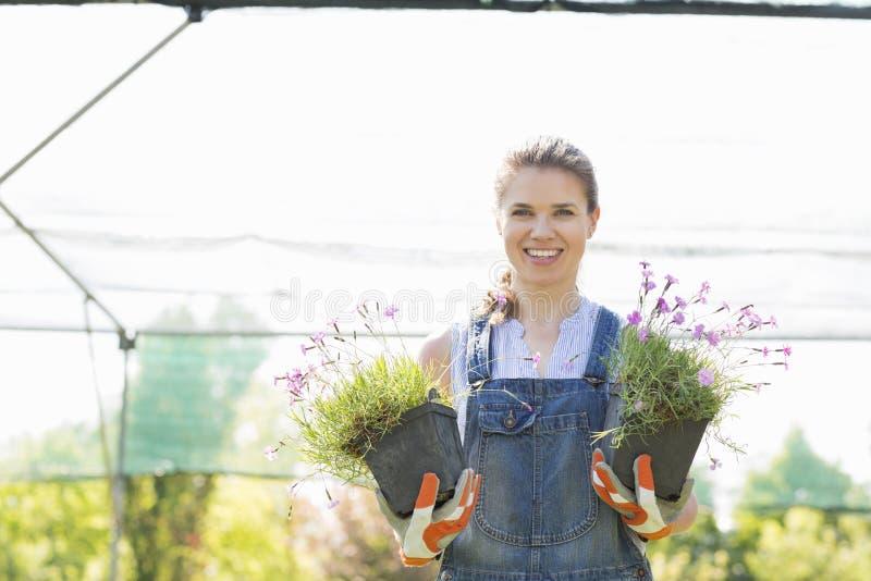 Ståenden av det säkra trädgårdsmästareinnehavet lade in växter på växthuset royaltyfria foton
