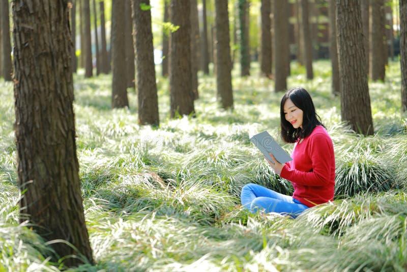 Ståenden av en asiatisk kinesisk fri kvinnaläsebok i vårhöst parkerar i skog arkivfoton