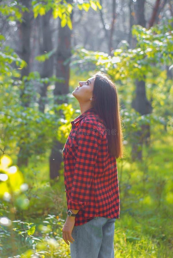 ståenden av en flicka i höstskogen ser upp arkivbilder