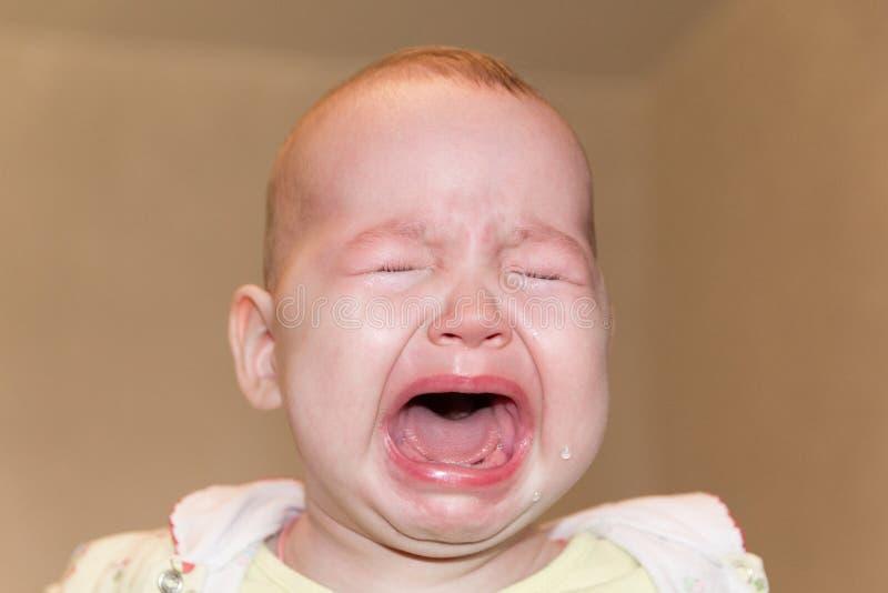 Ståenden av en gråt behandla som ett barn Revor på framsidan royaltyfria bilder