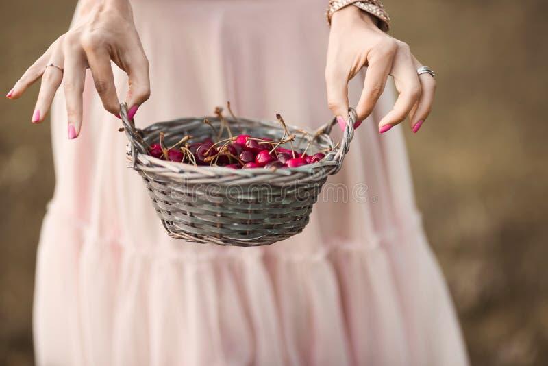 Ståenden av en härlig romantisk brunettflicka med en korg av körsbär i gör grön trädgården arkivbilder