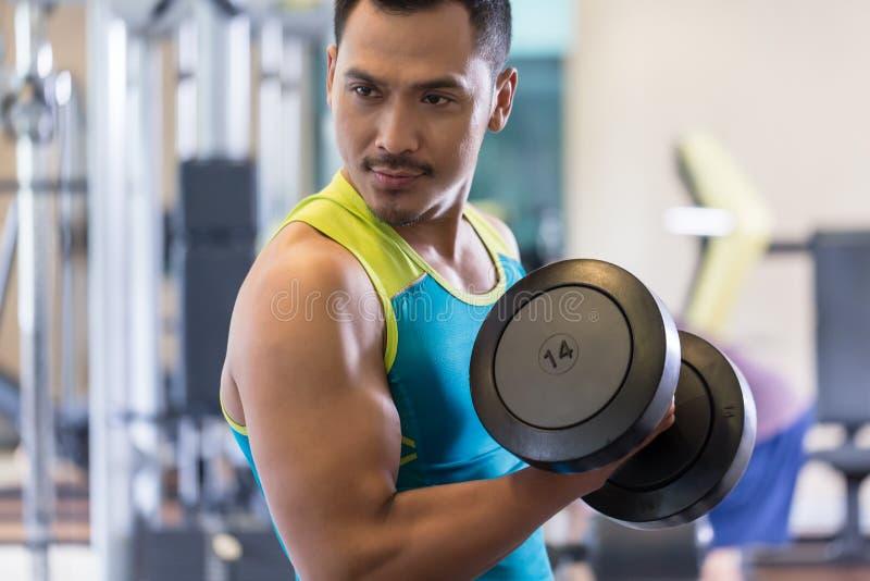 Ståenden av en stilig ung man som övar bicepen, krullar på idrottshallen royaltyfri foto