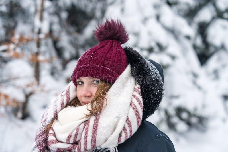 Ståenden av en ung kvinna i ett vintrigt landskap med varm kläder ett röd lock och halsduk royaltyfri bild