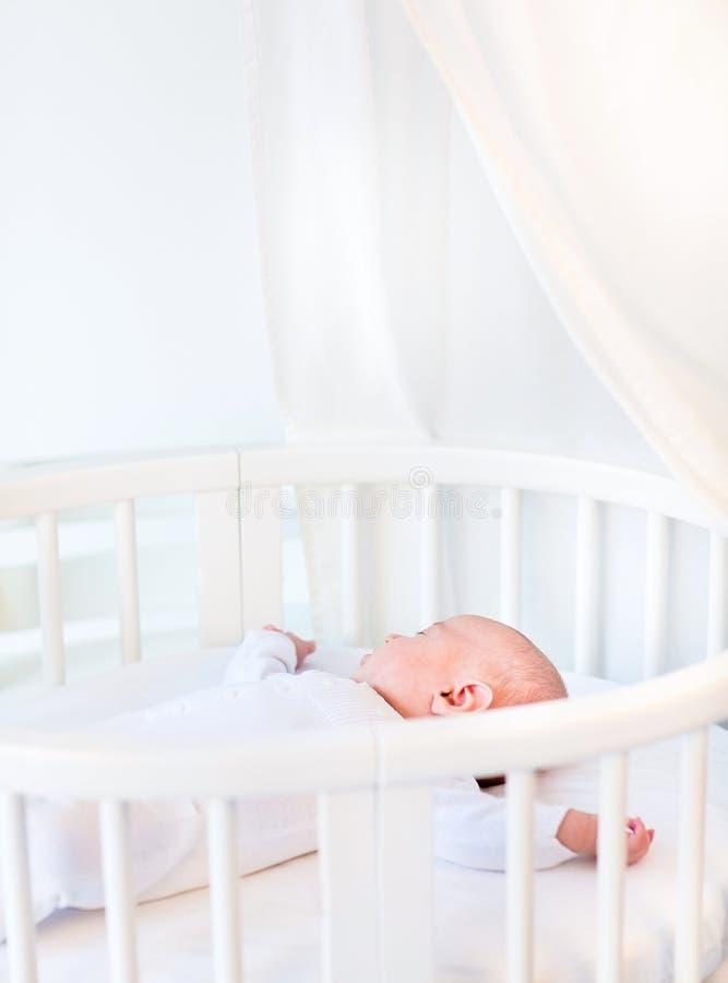 Ståenden av ett nyfött behandla som ett barn pojken i vitrundalathund royaltyfria foton