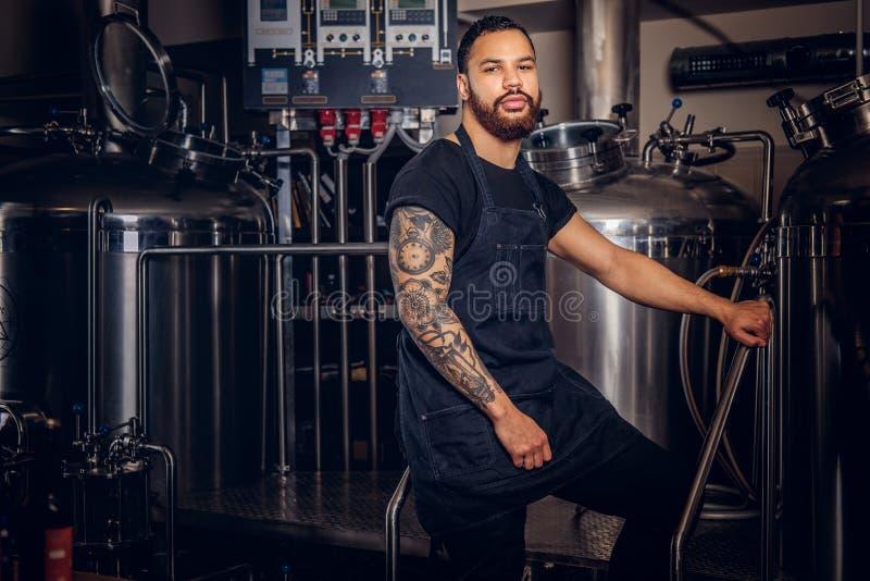 Ståenden av ett stilfullt skäggigt mörker flådde mannen med en tatuering på hans handanseende bak räknaren i bryggeriet royaltyfria foton