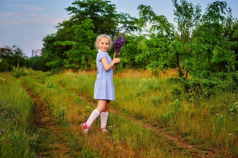 Ståenden av flickan på en sommar går lite i fältet arkivfoto