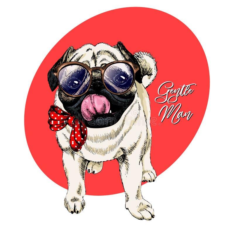Ståenden av hipstermops som bär exponeringsglas, och bandet bugar Vektor inristad detaljerad hundillustration tecknad hand kulört stock illustrationer