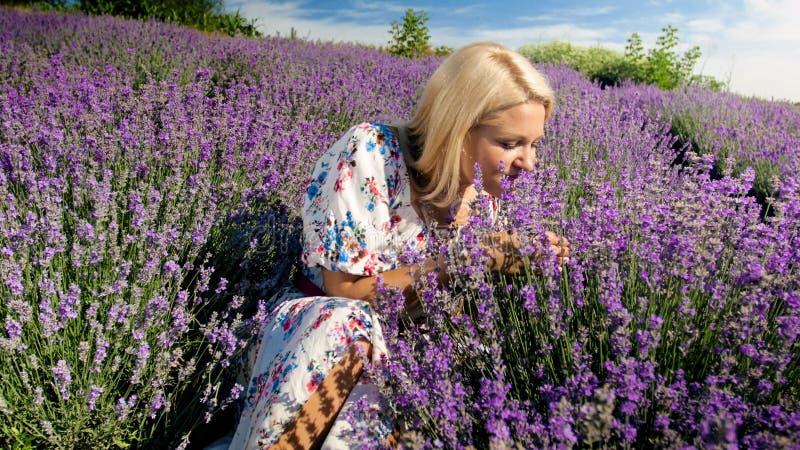 Ståenden av ungt blont kvinnasammanträde på jordning på fältet och att lukta för lavendel blommar arkivfoto