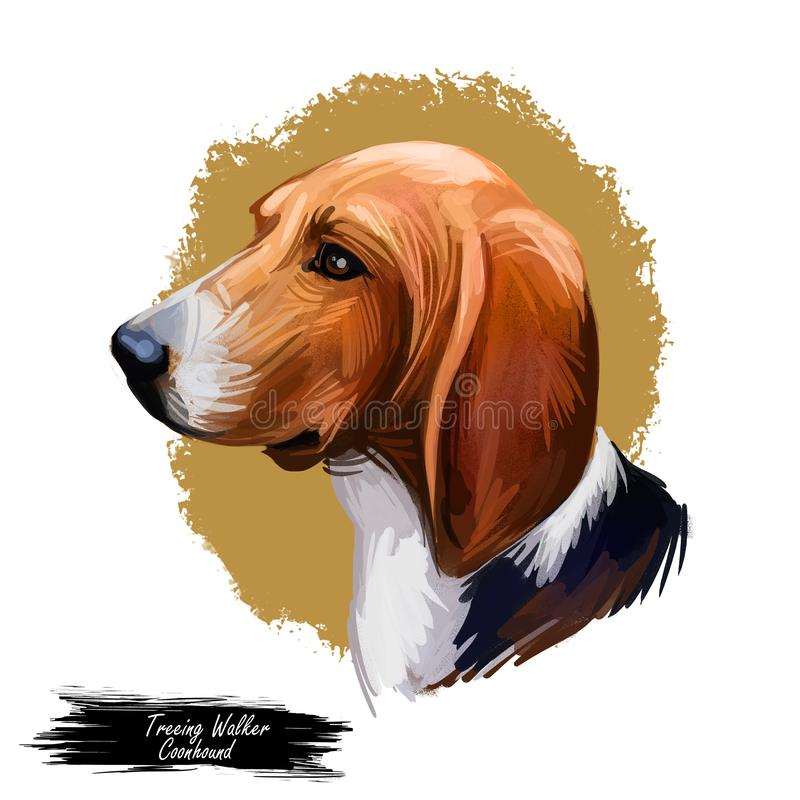 Ståenden för den Treeing Walker Coonhound eller Tennessee Lead hundaveln isolerade Digital konstillustration, dragen vattenfärgte stock illustrationer