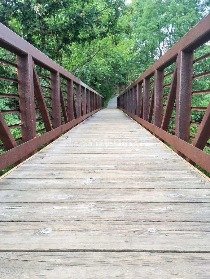 Download Stål och Wood gå bro fotografering för bildbyråer. Bild av vandringsled - 76701317