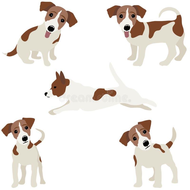stålarrussell terrier Vektorillustration av en hund royaltyfri illustrationer