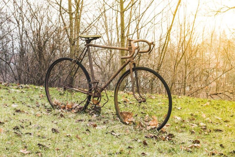 Står den rostiga cykeln för mycket gammalt järn på det gröna gräset och hösten ye royaltyfria bilder