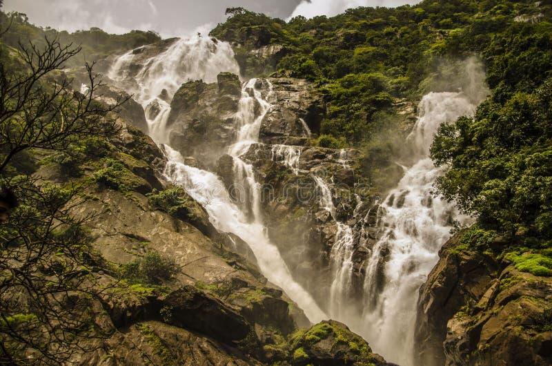 Störst vattenfall i Indien arkivfoton