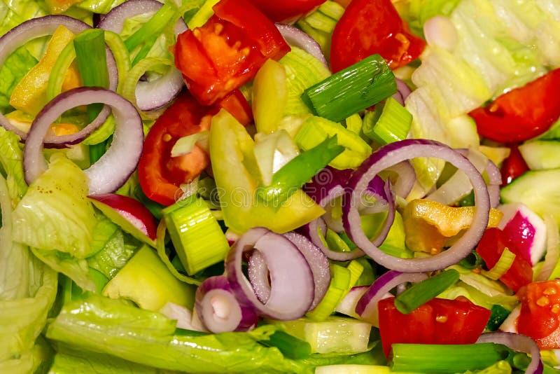 Stückchen Gemüsegurkentomaten schellt rote Zwiebel, die Scheiben bunten Hintergrund des Salzlichtgarnierungslicht-Imbisses pfeffe stockfoto